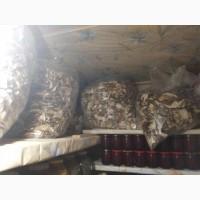 Продам білі сушені гриби 2020року в наявності 60кг