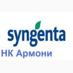 Семена подсолнечника Сингента НК Армони (Syngenta NK Armoni)