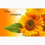 Семена подсолнуха Тунка Лимагрейн