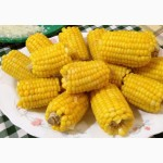 Закупаем в любом колличестве Кукуруза с гмо и без