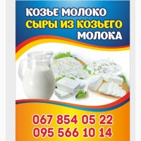 Продам козье молоко, сыры из козьего молока