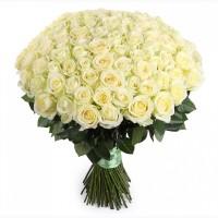 Белые розы (21-301 шт)
