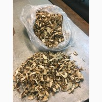 Сушений білий гриб карпатський