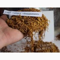 Отличный табак сорта «Вирджиния». Приятно курится, ароматный. В наличии