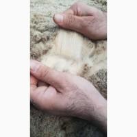 Мясобойня продает сырье- шкуры овец