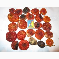 Мухомор красный Amanita muscaria
