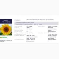 Пропонуємо купити насіння гібриду соняшнику – Пегас (PEGAS NS H 6341)