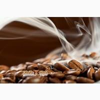 Кофе в зернах Арабика Эквадор Галапагос. Свежая обжарка