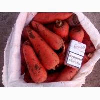 Продам морковь 1-2 сорт, Крупную