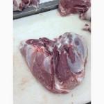 Мясо свинини: окорок, лопатка, корейка, ошийок, вирізка