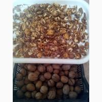Закупаем орех грецкий кругляк, чищеный в любом колличестве