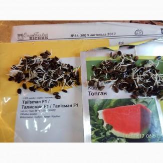 Продаю семена арбуза F2 Топган и Талисман