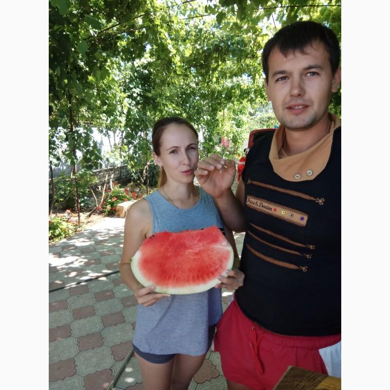 Фото 9. Продаю семена арбуза F2 Топган и Талисман