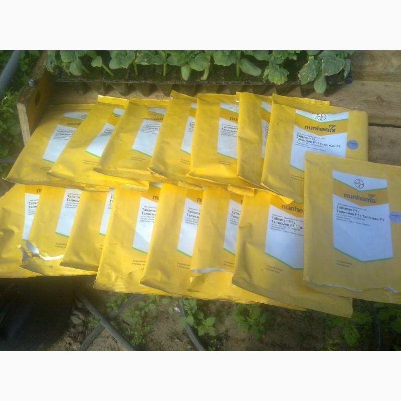 Фото 3. Продаю семена арбуза F2 Топган и Талисман
