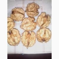 Продам орех грецкий кругляк