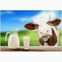 Сухое молоко Лактивит для телят поросят козлят