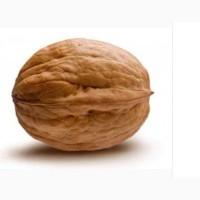 Продаю опт целые греческие орехи этого года.не колиброванные(на бой)